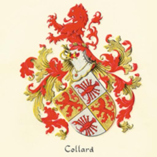 Alternatieve geneeswijzen van collard